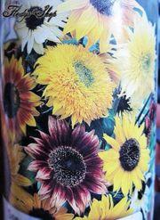 20 Samen Sonnenblume Mix Blume