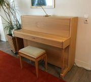 SAUTER Klavier - Piano Vision 116