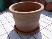 großer Pflanzkübel Pflanztopf Terracotta Durchm