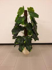 Kunstpflanze Philopflanze I GE A