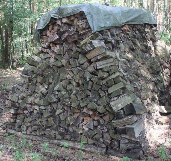 Brennholz trockenes Brennholz Ofenholz gemischt