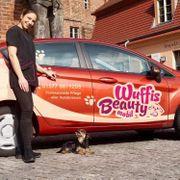Mobiler Hundefriseur in der Stadt