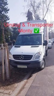 Umzug Transporter monty
