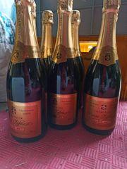 7 Flaschen 1996 Chardonnay Champagne