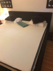 Doppel Bett