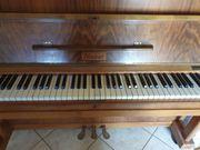Klavier von Nieber