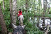 4-Tages- Wanderritt Wandern zu Pferd 2