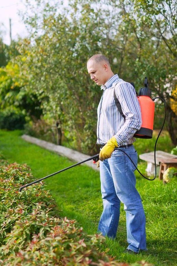 Aufruf zum Schädlingsbekämpfer mit Schädlingsbekämpfung
