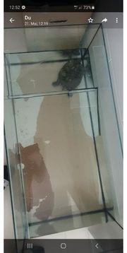 200l aquarium mit Wasserschildkröte ohne