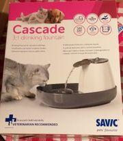 Trinkbrunnen für Hund und Katze