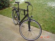 Fahrrad Pegasus Torino 28