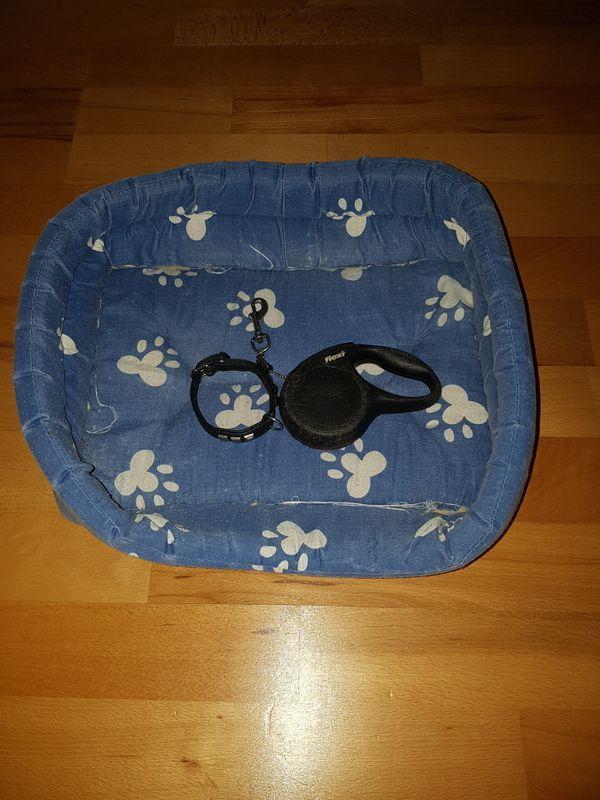 Klein Hundeleine Hundehalsband Katzen u