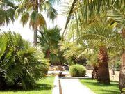 kl Natursteinfinca Finca - Panoramablick - Mallorca