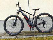 E-Bike Mountainbike Inspektion 20 01