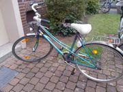 Fahrrad Damenfahrrad Schwalbe Reifen grün
