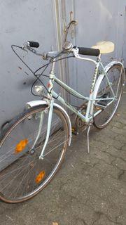 Fahrrad 28 zol