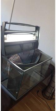 Aquarium von Tetra 30 cm
