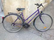 Damen-City-Bike Colorado