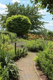 Gartenplanung - Gestaltung - Pflege Rundum - Service