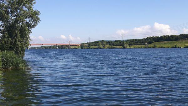 Schwimmen in der eiskalten Donau