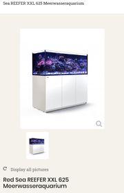 Meerwasseraquarium 625l