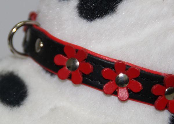 Hundehalsband Leder schwarz rot mit