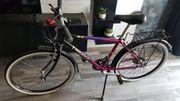 Fahrrad Pegasus 26 zoll