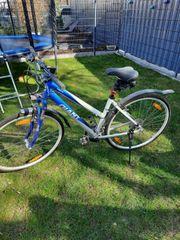 Giant Fahrrad 26 Zoll