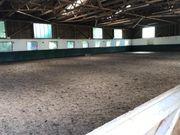 Einsteller Pferdebox Paddockbox Stall