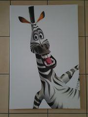 Zebra Leinwandbild