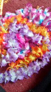Hawaiiketten