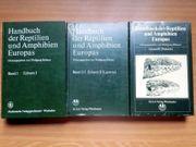 Großes Handbuch Reptilien alle 3