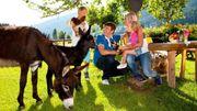 Hilfe bei den Tieren Kinder-