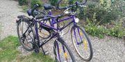 2Stk Trekkingräder Herrenrad Damenrad