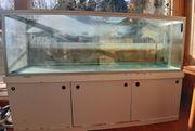 Aquarium Terrarium mit Unterschrank ca