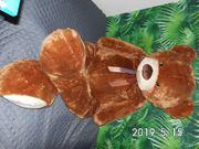 Teddy 150cm groß