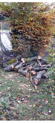 Kirschbaumholz