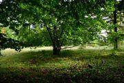 FreizeitGrundstück Garten südlich von München