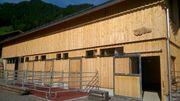 Paddockboxen in Au Bregenzerwald zu