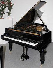 Klavier Flügel Bechstein 203cm schwarz