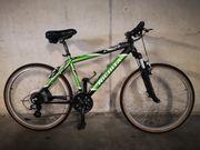 Mountainbike Fahrrad Herren 26 Zoll