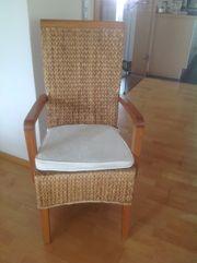 5 Wasserhyazinthen Stühle zu verkaufen