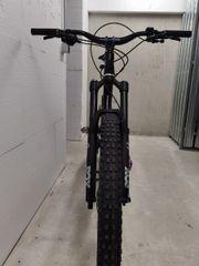 Mountainbike Ns Snabb 160 1