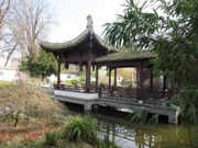 Tai Chi im Bethmann Park