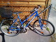 Damenrad Jugendrad Trekkingrad Marke Stevens
