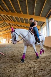 Reitbeteiligung an Western gerittenem Pferd