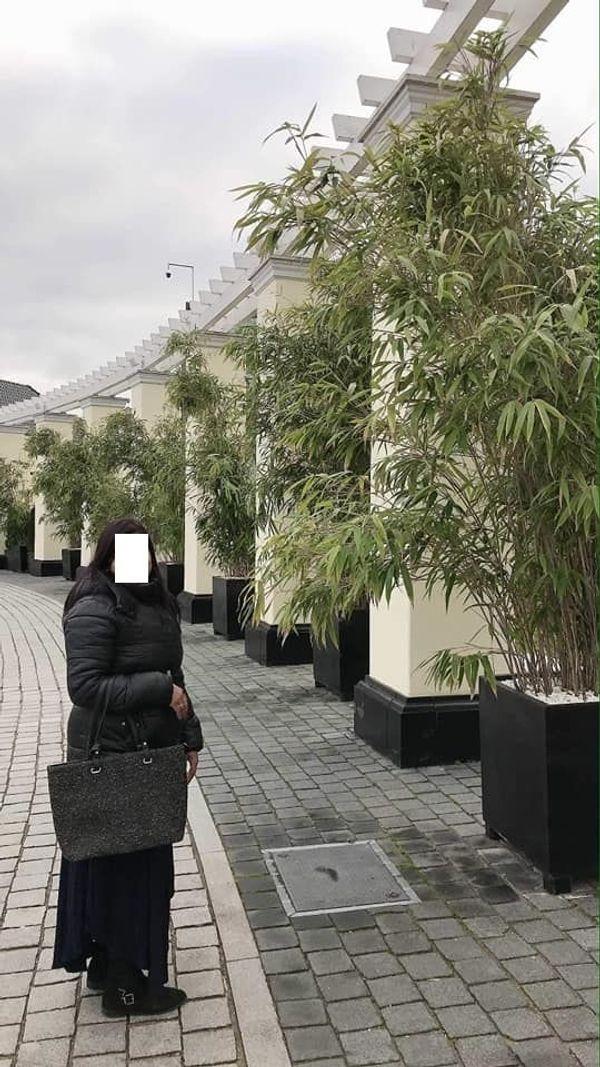 Paar suchen Frau