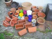 Terrakotta-Töpfe und Kunststoff-Töpfe große Auswahl
