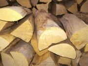 Brennholz-Buche trocken ofenfertig
