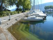 Liegeplatz mit Segelboot